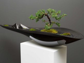 Плантатор Касокудо Бонсай (Kasokudo Bonsai Planter) от Adrian Magu.