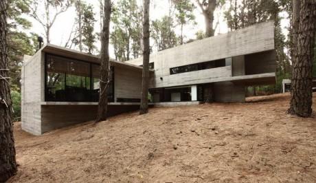 Бетонный дом в лесу