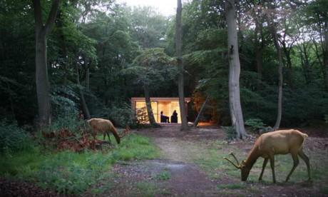 Лесной домик в Англии