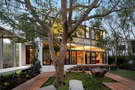 Дом с деревьям в Мексике