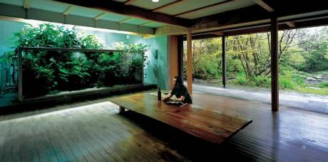 Ландшафт в аквариуме