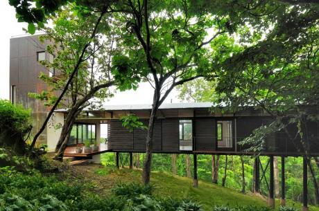 Лесной дом в Коста-Рике