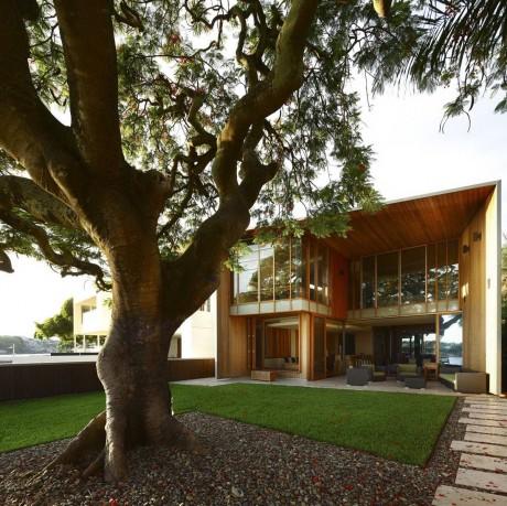 Дом с деревом в Австралии