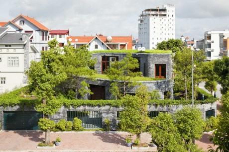 Зелёный дом во Вьетнаме 2