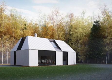 Типовой проект современного шведского дома