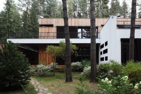 Деревянный дом в сосновом лесу