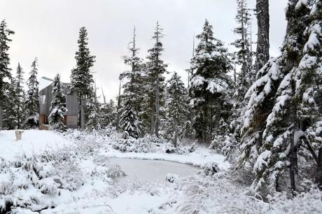 Альпийский домик - проект горного деревянного дома в лесу