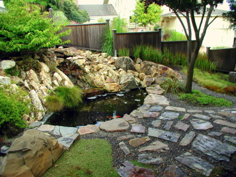 Пруды для карпов и золотых рыбок (Koi Fish Ponds)