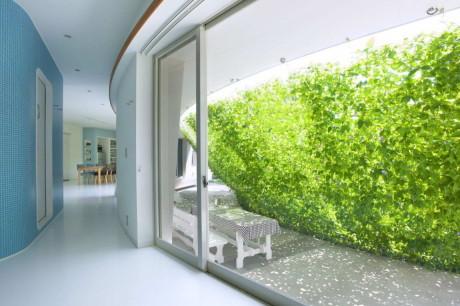 Дом с зелёным экраном (Green Screen House) в Японии от Hideo Kumaki Architect Office.
