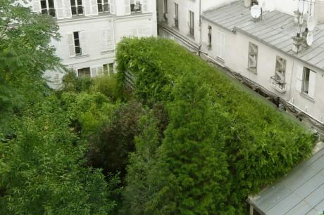 """""""Зелёный"""" дом в Париже"""