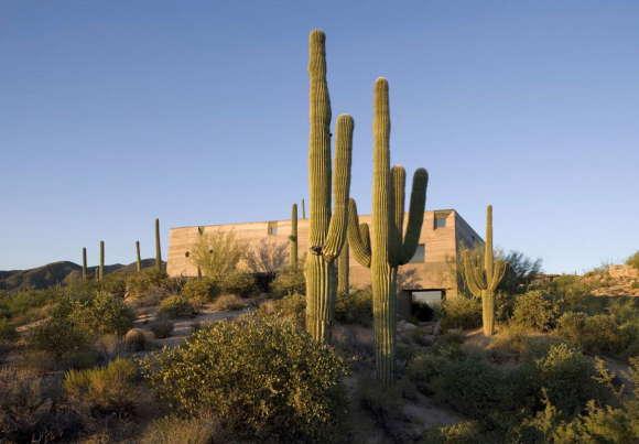 Desert Courtyard House 2