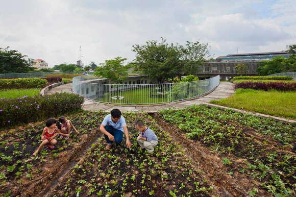 Spirals Farming Kindergarten 5