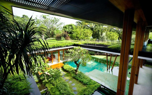 Water Lily House 8