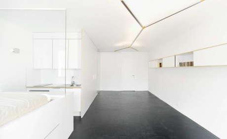 Квартира в Женеве (Geneva Flat) в Швейцарии от FREAKS freearchitects.