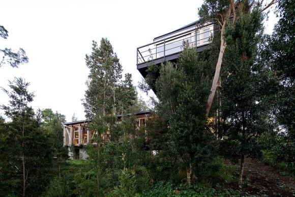 Casa Puente 6