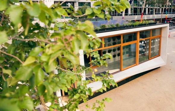 Carbon Positive House 6