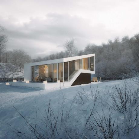 Проект современного загородного дома в Чехии