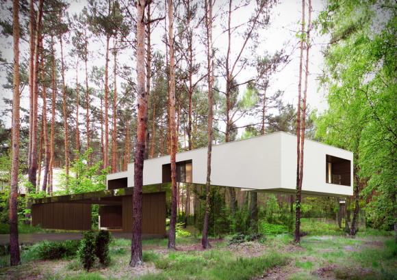 Проект лесного дома в Польше