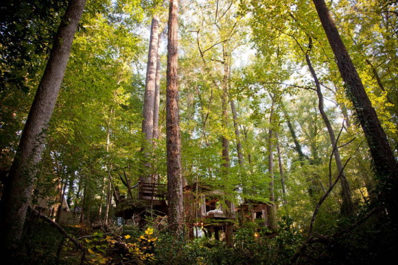 Уединённый домик на дереве (Secluded Intown Treehouse) в США.