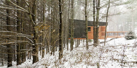 Whitetail Woods Cabins 3
