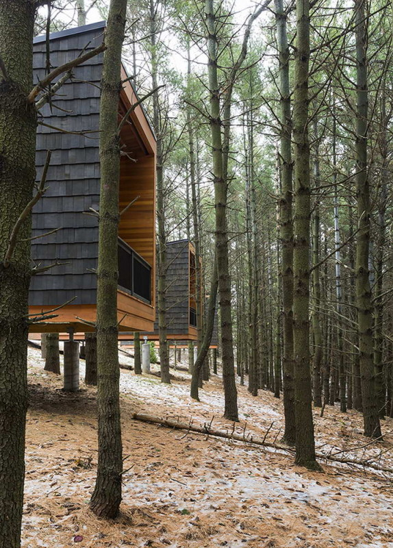 Whitetail Woods Cabins 6