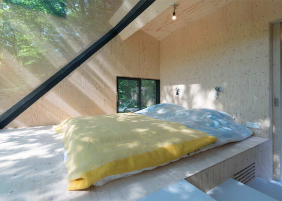 Трансформация лесного дома (Transformation Forest House) в Голландии от Bloot Architecture.