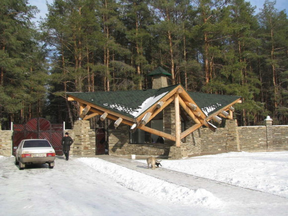 House in a pine forest 15