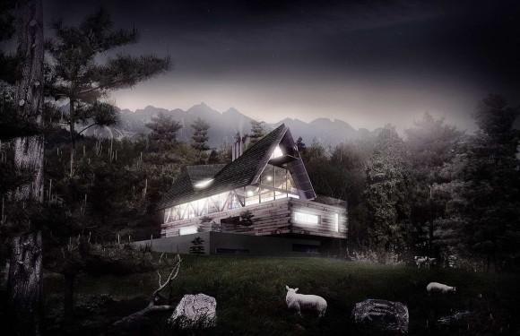 Polish House 4