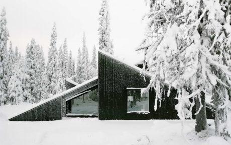 Три замечательных деревянных загородных дома с необычным обликом.