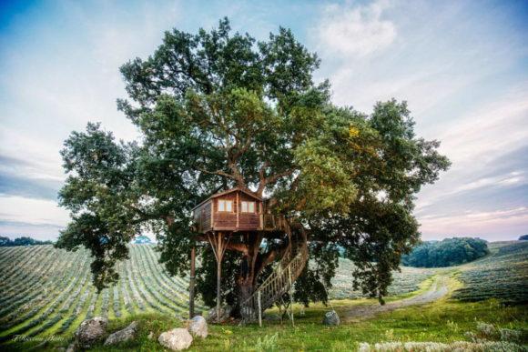 Домик на дереве в Италии