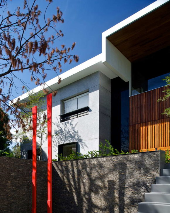 Casa bajo el Arbol 11