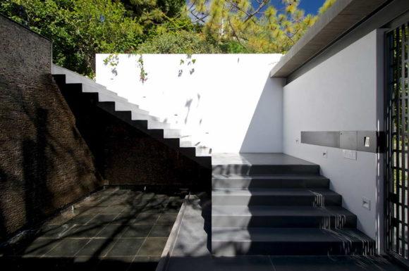 Casa bajo el Arbol 8