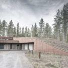 Дом, пророщенный из леса (Sprouting from a forest) в Финляндии от alt Architects.