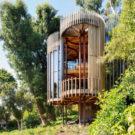 Дом-дерево (Tree House) в ЮАР от Malan Vorster.