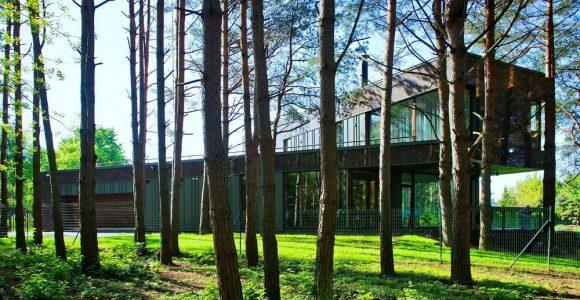Дом среди сосен в Литве