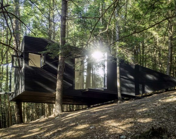 Дом на дереве в США от Jacobschang Architecture.