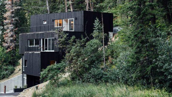 Лесной дом на склоне в США