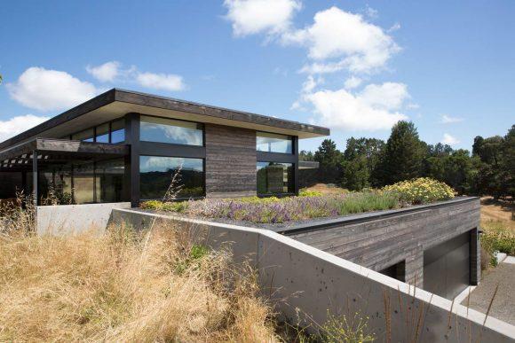Дом на лугу в США от Feldman Architecture.