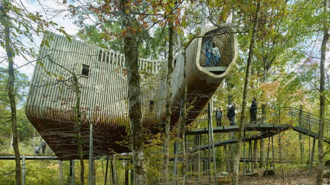 Домик на дереве в США